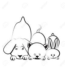 18343110-Dog-cat-and-rabbit-logo-Stock-Photo